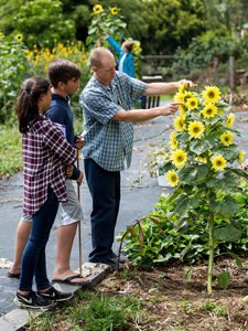 Sustainability at HPA, middle school garden