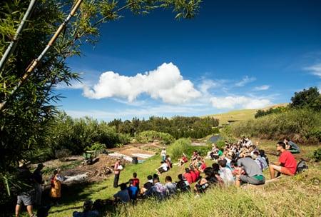 Ulu Mālama Terrace Farm, upper school campus HPA