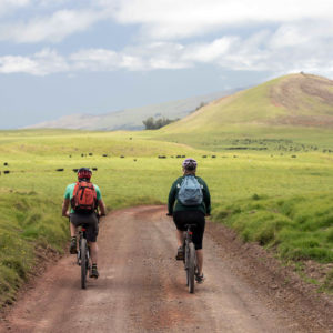 Riding back to Waimea on Mana Road, 2019