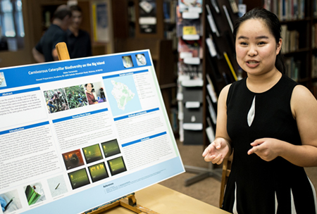 Projects & Capstones at HPA