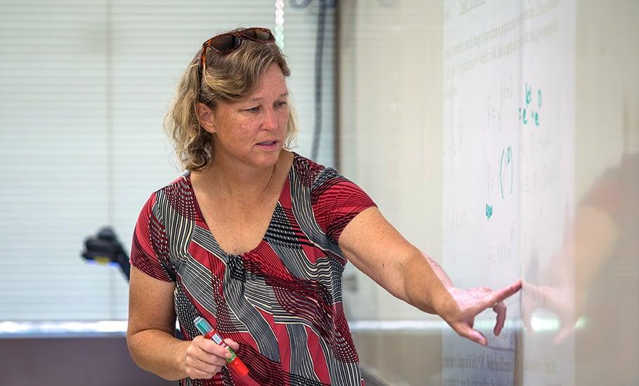 Patricia Kassis, Upper School math department chair